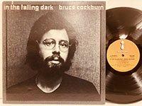 Bruce Cockburn / in the Falling Dark