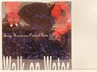Jerry Harrison / Casual Gods Walk on Water