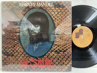 Harvey Mandel / the Snake