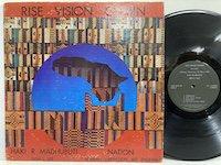 Haki R Madhubuti / Rise Vision Comin