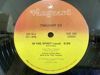Twilight 22 / in the Spirit