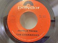 Chakachas / Jungle Fever