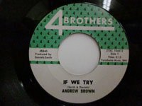 <b>Andrew Brown / If We Try - You Ought to be Ashamed</b>
