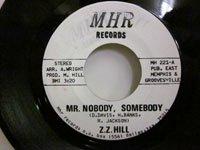 <b>ZZ Hill / Mr Nobody Somebody - Think People</b>