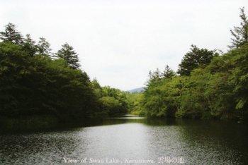 雲場の池(Swan lake)