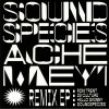 Soundspecies & Ache Meyi - Remix EP