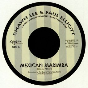 Shawn Lee & Paul Elliott - Mexican Marimba
