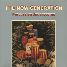 Peter Ludemann & Pit Troja - The Now Generation (Percussive Underscores)