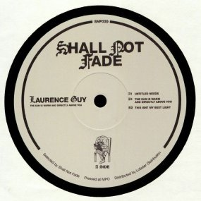 Laurence Guy - The Sun Is Warm And Directly Above You EP