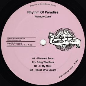 Rhythm Of Paradise - Pleasure Zone