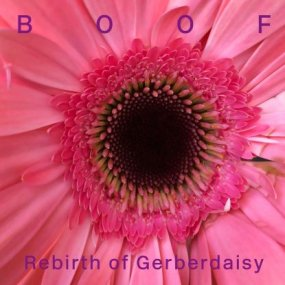Boof - Rebirth Of Gerberdaisy