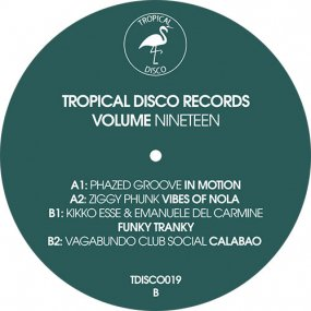 V.A. - Tropical Disco Records Vol. 19
