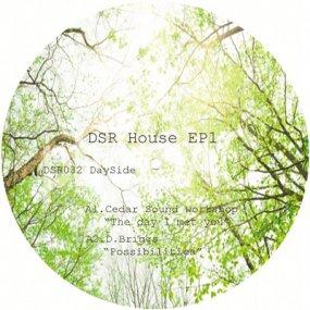 V.A. - DSR House EP 1