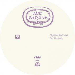 Nic Arizona - Floating The Flood (incl. Lena Willikens Remix)