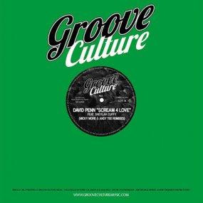 David Penn feat. Sheylah Cuffy - Scream 4 Love (Micky More & Andy Tee Remixes)