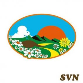 SVN - SVN