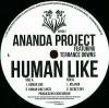 Ananda Project feat. Terrance Downs - Human Like EP
