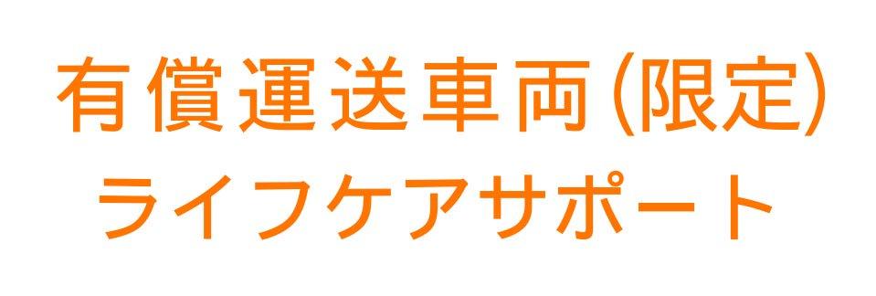 切り文字CY01-オレンジ(600mm×150mm)