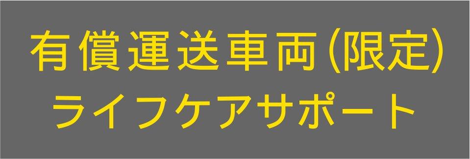 切り文字CY01-黄色(600mm×150mm)