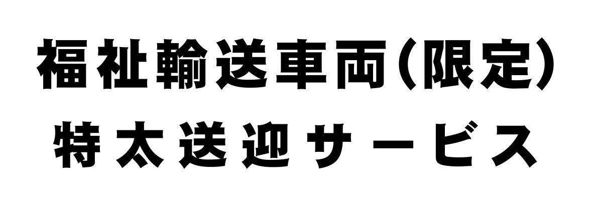 B.特太ゴシック