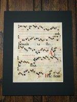 『グレゴリオ聖歌 手書きカリグラフィ』羊皮紙 一葉 T