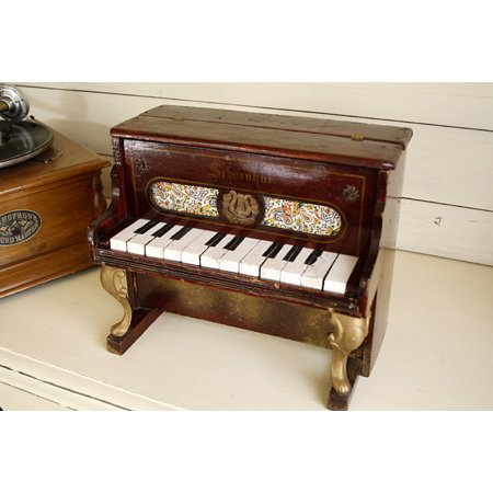 アンティーク トイピアノ シェーンハット 12鍵 20世紀初頭 ローズウッド調