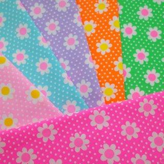 picnic 大人買いハーフセット(限定カラー入り全6色)