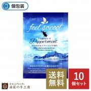【送料無料】夏季限定 フィールソークール入浴剤 10個