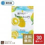 【送料無料】ハーバルエクストラ リッチバスパウダー「瀬戸内レモン」30個