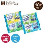 【送料無料】薬用入浴剤 バスラボ さっぱり保湿COOL 40個セット