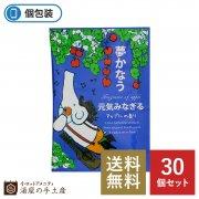 【送料無料】パルパルポー入浴剤「アップルの香り」30個