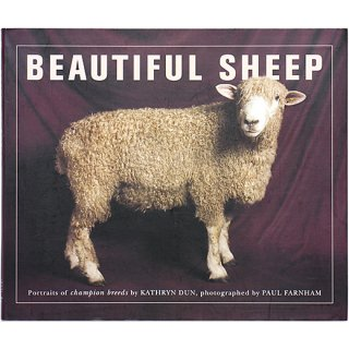 Beautiful Sheep: Portraits of Champion Breeds 美しい羊