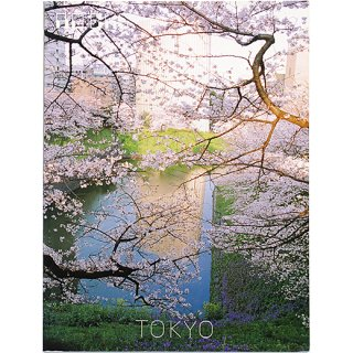 <img class='new_mark_img1' src='https://img.shop-pro.jp/img/new/icons5.gif' style='border:none;display:inline;margin:0px;padding:0px;width:auto;' />ROCKS / TOKYO NO.7