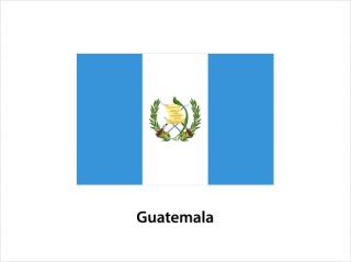 ガテマラ<br>アンティグア アゾティア農園