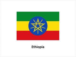 エチオピア モカ<br>イリガチャフ G1 フローラル