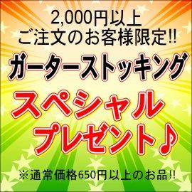 2000円以上ご注文の方限定【無料プレゼント】ガーターストッキング