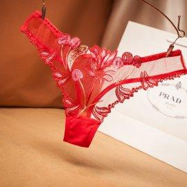 フラワー刺繍入り 激透けシースルーTバック 赤