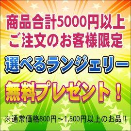 【無料プレゼント】5000円以上ご注文の方限定★選べるランジェリー