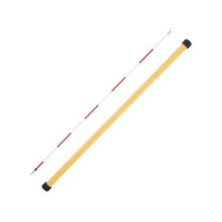 【DMP-1500】DMピンポール(バラ 1本入)