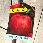リンゴ 苗木 富士 12cmポット苗 (ワイ性) ふじリンゴ りんご 苗 林檎