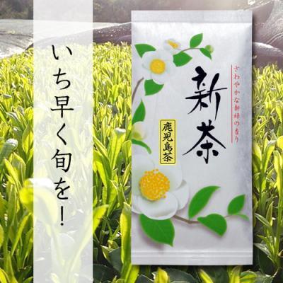 新茶【鹿児島産新茶】2016