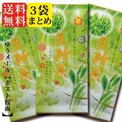新茶 【生新茶】 2019 3本セット(メール便対応)