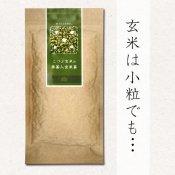 【玄米茶】 こつぶ玄米の抹茶入玄米茶 70g