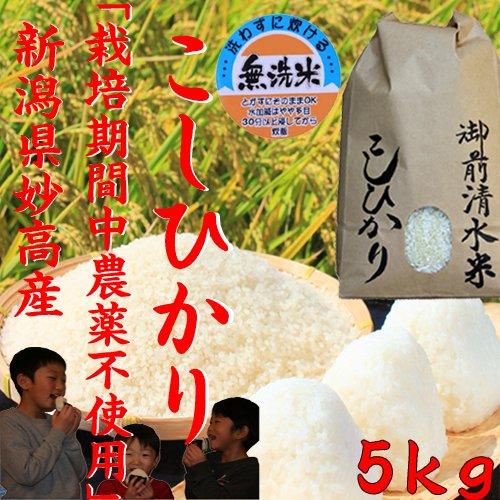 御前清水米5キロ(無洗米) 栽培期間中農薬不使用・有機肥料100%使用 28年産 新米