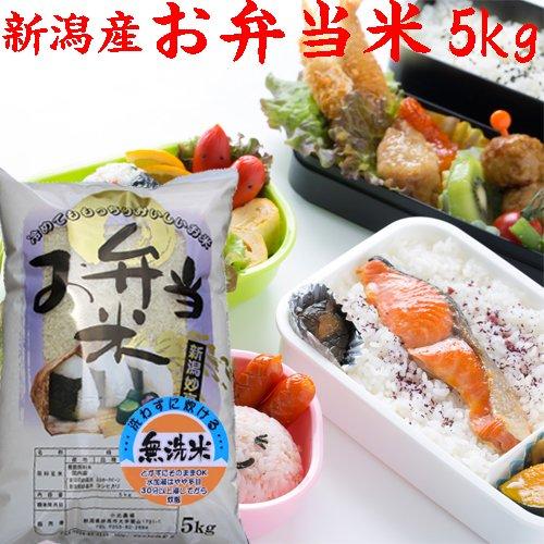 お弁当米5kg (無洗米) 28年産 新米