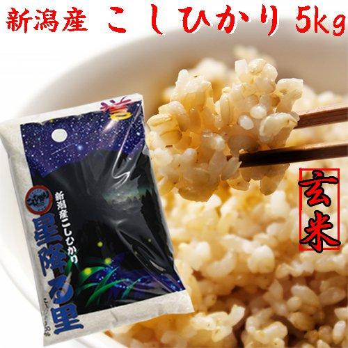 コシヒカリデラックス5kg(玄米)「28年産 新米」