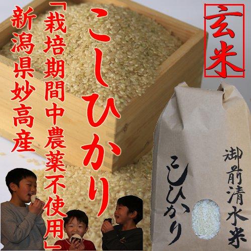 御前清水米5kg(玄米)限定販売「29年産 新米」