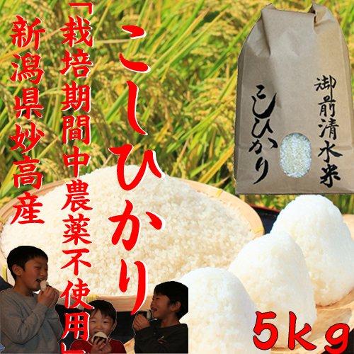 御前清水米5kg(5分づき)限定販売「29年産 新米」