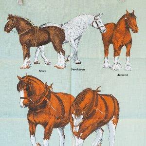 馬のティータオル