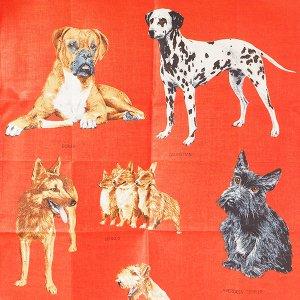 犬のティータオル